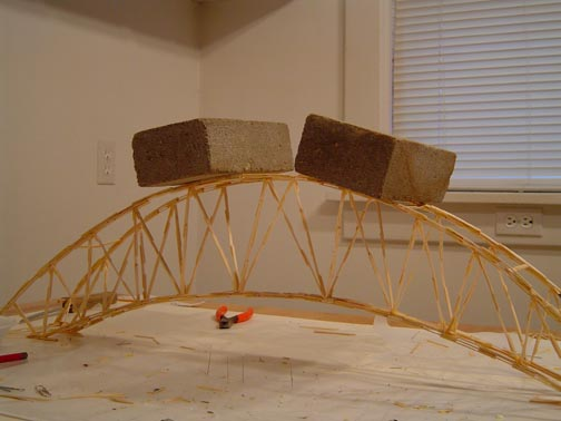 toothpick suspension bridge